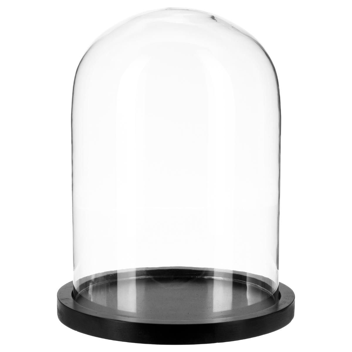 Cloche en verre socle bois - Atmosphera
